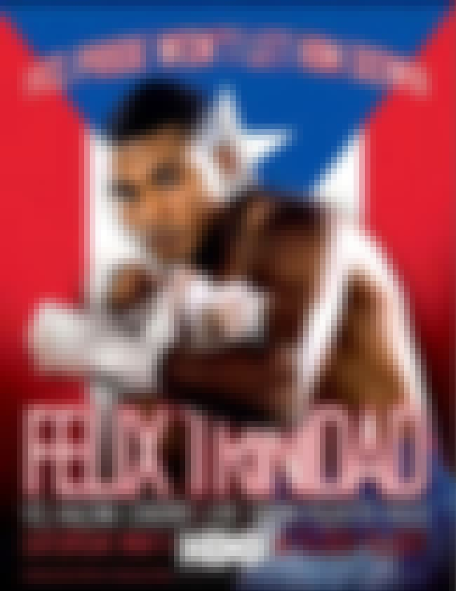 Félix Trinidad is listed (or ranked) 5 on the list Famous Professional Boxers from Puerto Rico