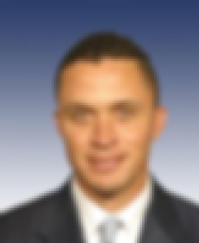 Harold Ford, Jr. is listed (or ranked) 1 on the list Famous People who Majored in American History