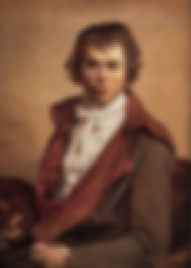 Jacques-Louis David is listed (or ranked) 8 on the list Famous Neoclassicism Artists