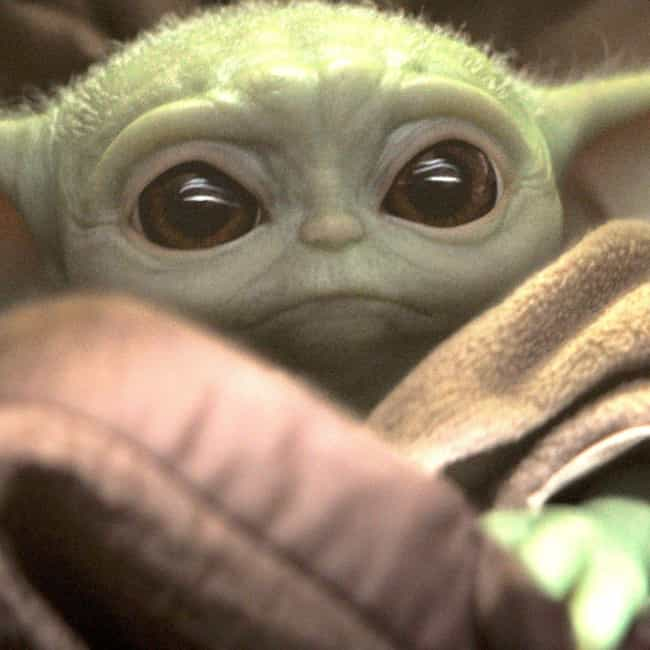 The Child (Baby Yoda) is listed (or ranked) 1 on the list Things That Were A Thing: December 2019 Edition