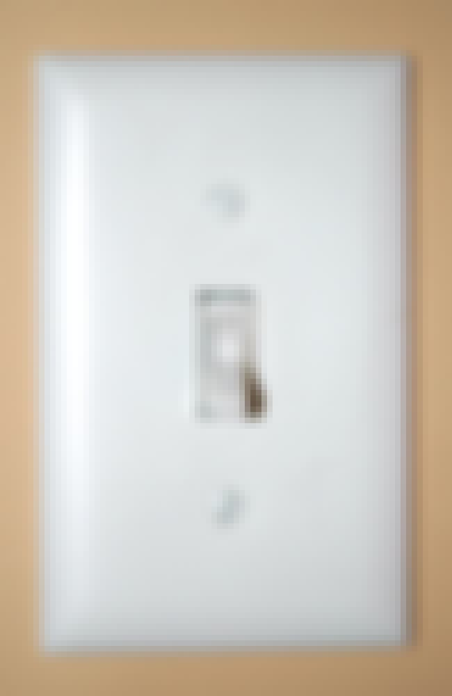 Light Switch is listed (or ranked) 2 on the list The Dirtiest Things You Touch Every Day
