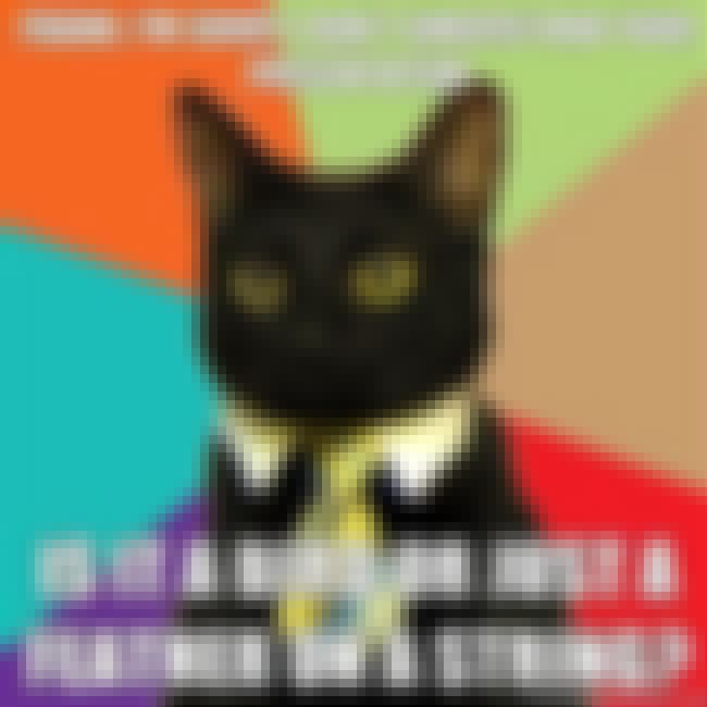 Business Cat on Powerpoint is listed (or ranked) 14 on the list The Absolute Best of the Business Cat Meme