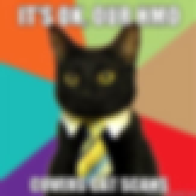 Business Cat on Benefits is listed (or ranked) 13 on the list The Absolute Best of the Business Cat Meme