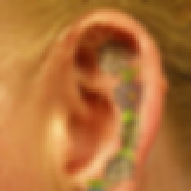 Ear is listed (or ranked) 7 on the list The Worst Place to Get a Tattoo