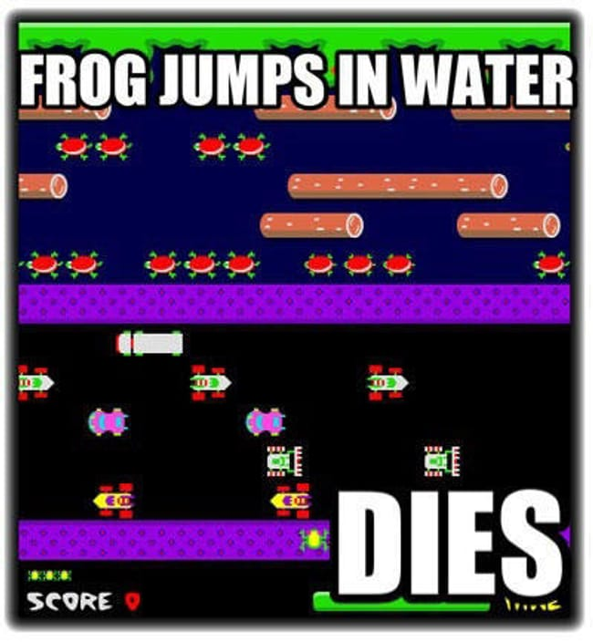 Amphibians in the Wild is listed (or ranked) 18 on the list 101 Jokes Only Gamers Will Understand
