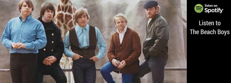 Sounds of the Beach Boys