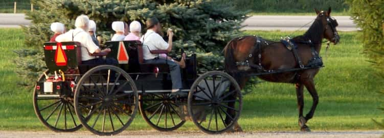 Living in an Amish Paradise