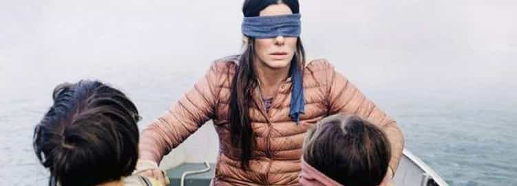 What's in the Bird Box?