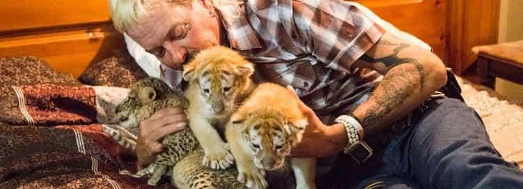 Tiger King!
