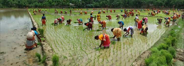 Visit Beautiful Bangladesh