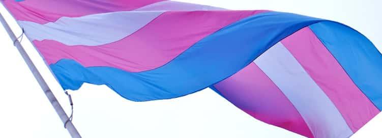 Trans Community