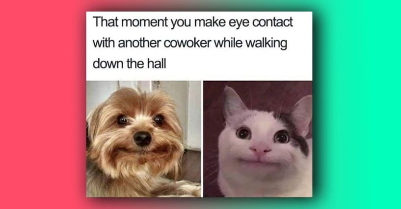 38 Memes That Will Only Make Sense If You've Worked In An Office Before