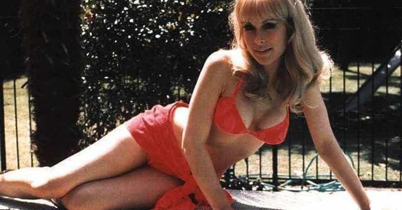 Sexy Barbara Eden  Hot Pics  Photos-7193