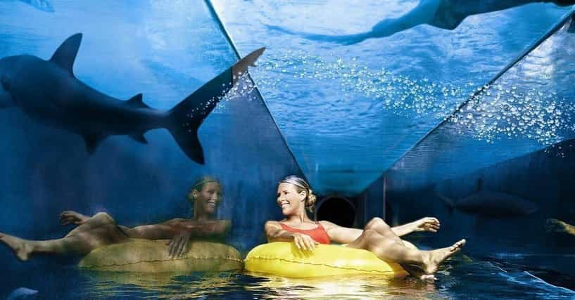 Scary Water Slides 7 Terrifying Water Attractions