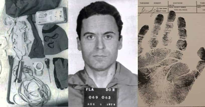 ted bundy a personality comparison with Abstract the case study of theodore bundy compares his personal characteristics and criminal behavior with the contemporary violent sexual murder typologies the theodore (ted) bundy case.