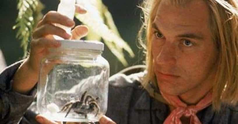 Movies That Have Spiders In Them