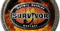 The Celebrities You Most Want To See Play Survivor