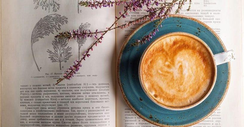 20+ Cheap Coffee Table Books You'll Love