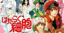 The Best Anime Like Cells At Work