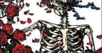 The Best Official, Non-Archival Grateful Dead Albums