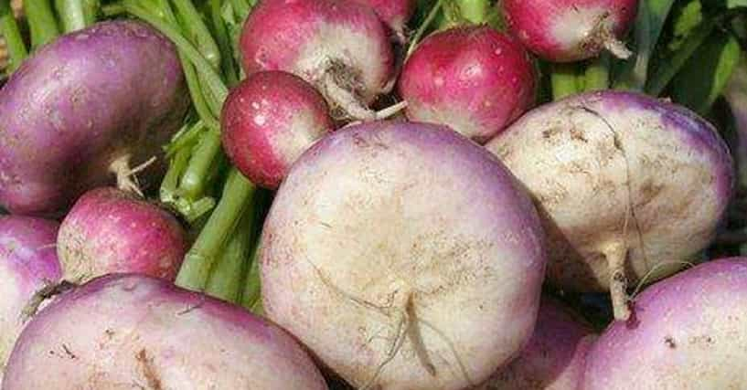 The Best Root Vegetables & Tubers