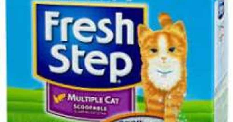 List All Types Of Cat Litter