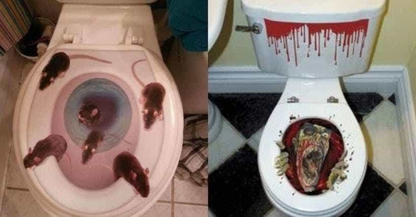 33 Funny Toilet Seat Covers That Make Your Bathroom