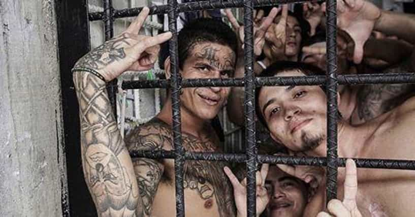 18 crazy facts and stories about the ms13 gang