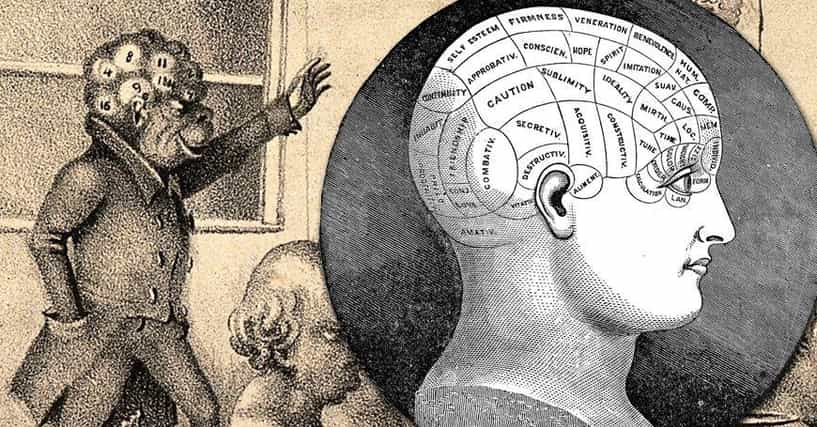 Phrenology is the study of