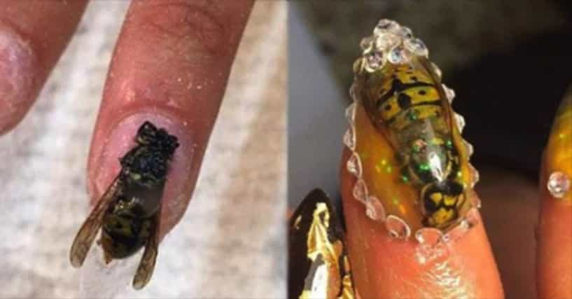 This Salon Owner Uses Dead Bugs To Decorate Her Clients Nails
