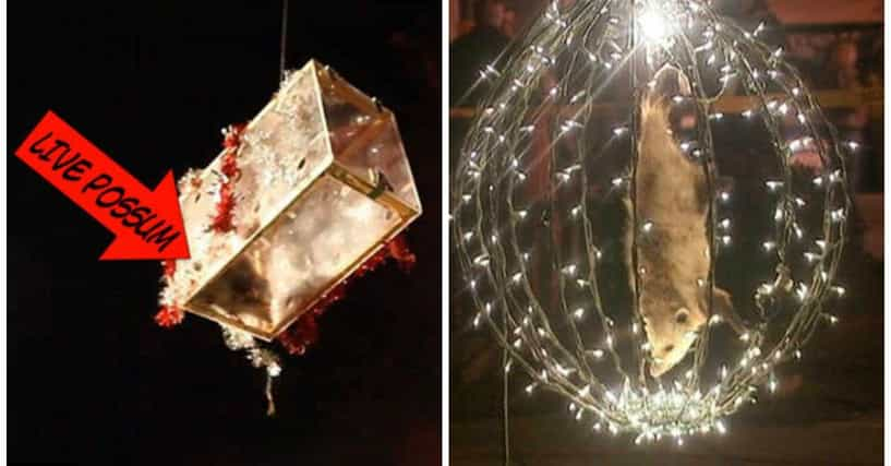 The Weirdest Things That Drop To Ring In The New Year