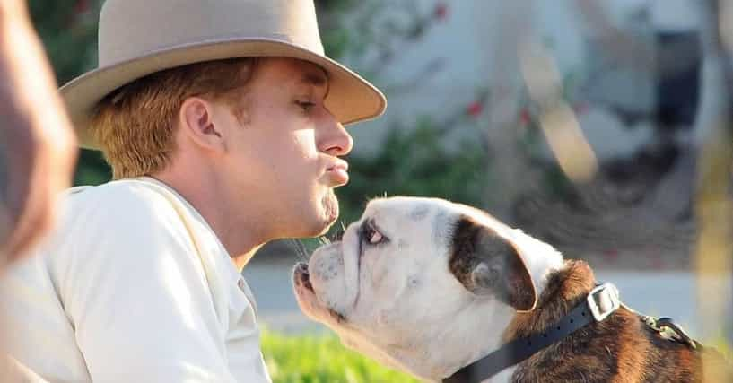 Cute Guys With Animals | List of Sexy Men With Animals