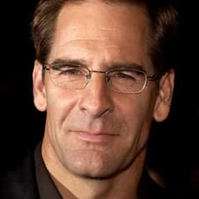 Scott Bakula is listed (or ranked) 16 on the list TV Actors from St. Louis