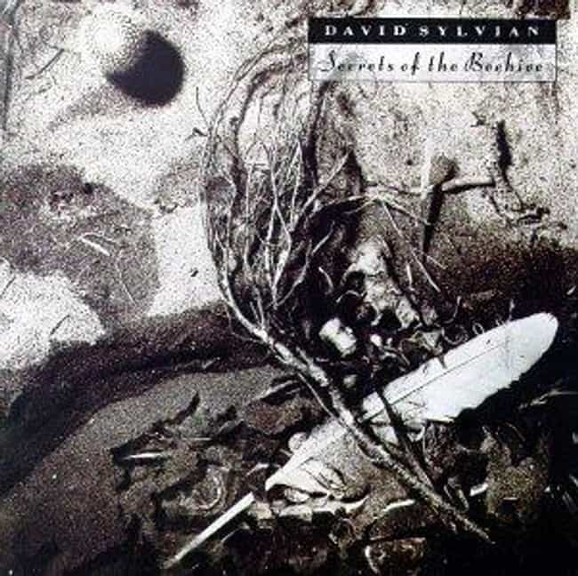 Secrets of the Beehive is listed (or ranked) 1 on the list The Best David Sylvian Albums of All Time