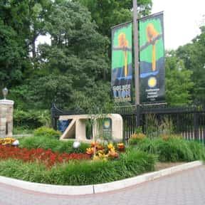Smithsonian National Zoologica is listed (or ranked) 12 on the list The Best Zoos in the United States