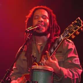 Stephen Marley is listed (or ranked) 20 on the list The Best Reggae Bands/Artists