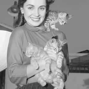 Susan Cabot is listed (or ranked) 22 on the list Full Cast of Houseboat Actors/Actresses