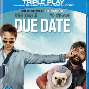 Due Date is listed (or ranked) 2 on the list The Best Zach Galifianakis Movies