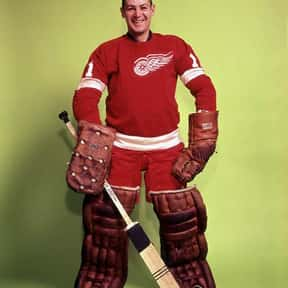 Terry Sawchuk is listed (or ranked) 13 on the list Famous Hockey Players from Canada