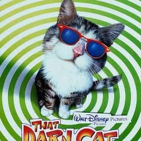 That Darn Cat is listed (or ranked) 13 on the list The Best Cat Movies for Kids