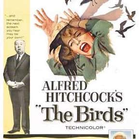 The Birds is listed (or ranked) 7 on the list The Best Movies Based on Short Stories