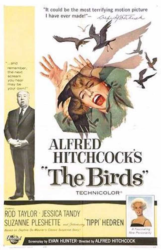 The Birds is listed (or ranked) 8 on the list The Most Terrifying Horror Movies That Are Based on Books