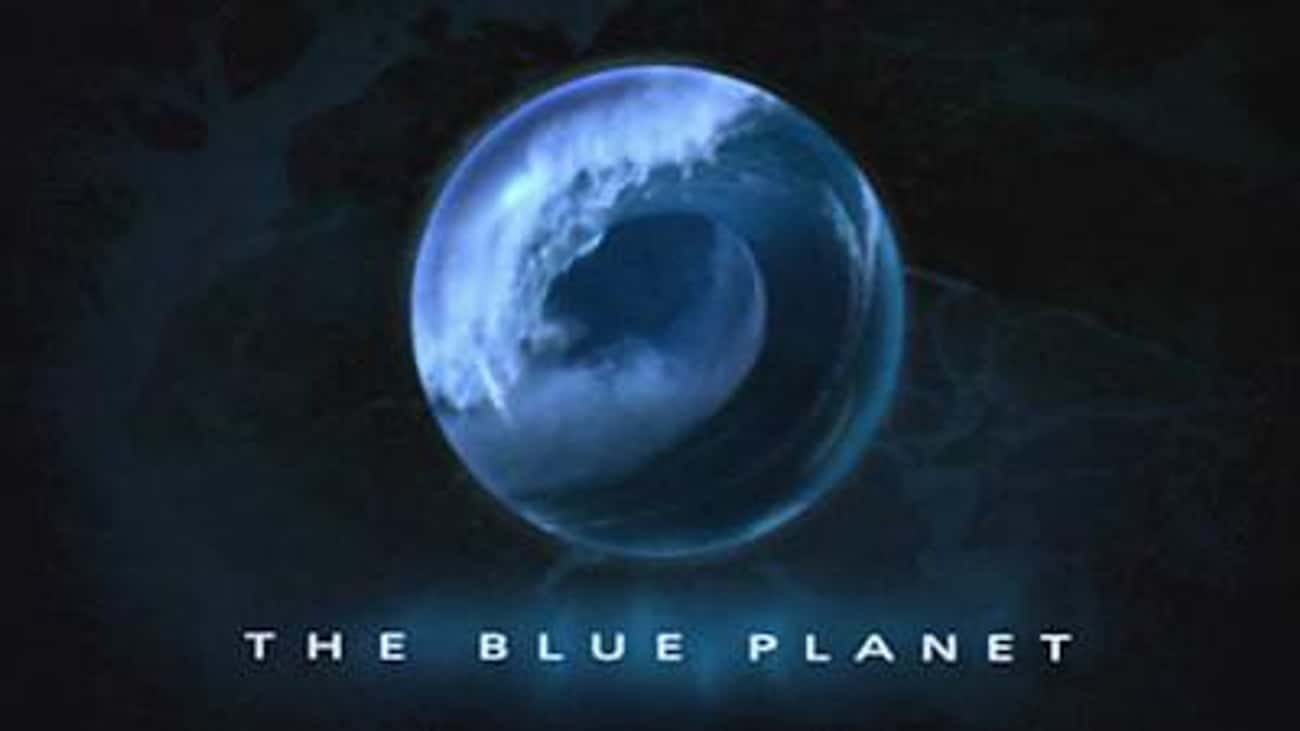 The Blue Planet is listed (or ranked) 2 on the list The Best Oceanic Documentary Series