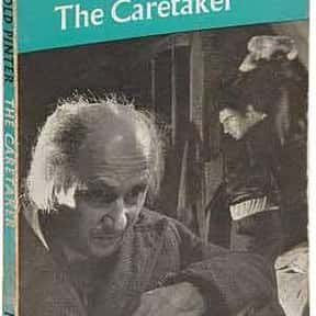 The Caretaker is listed (or ranked) 16 on the list Harold Pinter Plays List