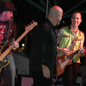 The Fabulous Thunderbirds is listed (or ranked) 16 on the list The Best Bands Named After Birds
