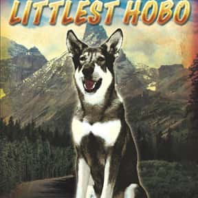 The Littlest Hobo is listed (or ranked) 23 on the list The Best Live-Action TV Shows Starring Animals