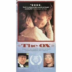 The Ox
