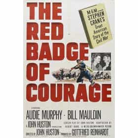 the transformation of henry into a hero in the red badge of courage a novel by stephen crane Download the app and start listening to the fall of the house of usher  stephen crane's the red badge of courage was  henry flemming, stephen crane.