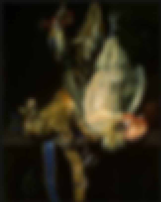 Still Life with Dead Game is listed (or ranked) 2 on the list List of Famous Willem Van Aelst Artwork
