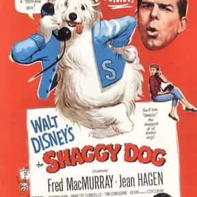 The Shaggy Dog [1959] is listed (or ranked) 4 on the list The Best Dog Movies for Kids